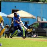Cricket Bermuda July 8 2017 (10)