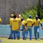 Cricket Bermuda July 8 2017 (11)