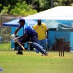 Cricket Bermuda July 8 2017 (12)