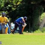 Cricket Bermuda July 8 2017 (16)