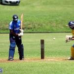 Cricket Bermuda July 8 2017 (19)