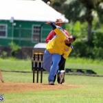 Cricket Bermuda July 8 2017 (2)
