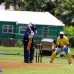 Cricket Bermuda July 8 2017 (4)