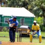 Cricket Bermuda July 8 2017 (5)