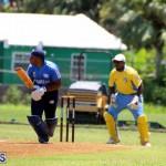 Cricket Bermuda July 8 2017 (6)