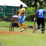 Cricket Bermuda July 8 2017 (7)