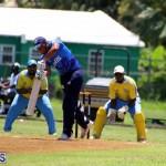 Cricket Bermuda July 8 2017 (9)
