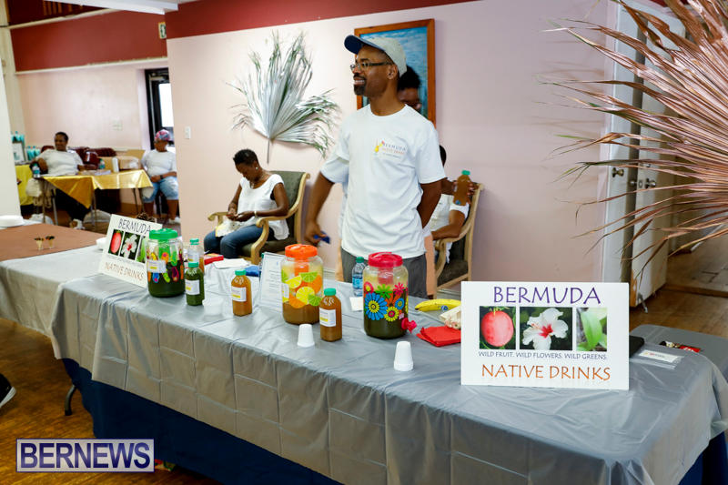 Natural-Blessings-Hair-Beauty-Expo-Bermuda-July-22-2017_3146