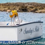 013-Go Down Berries concert Bermuda 2017 (13)