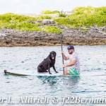 111-Go Down Berries concert Bermuda 2017 (111)