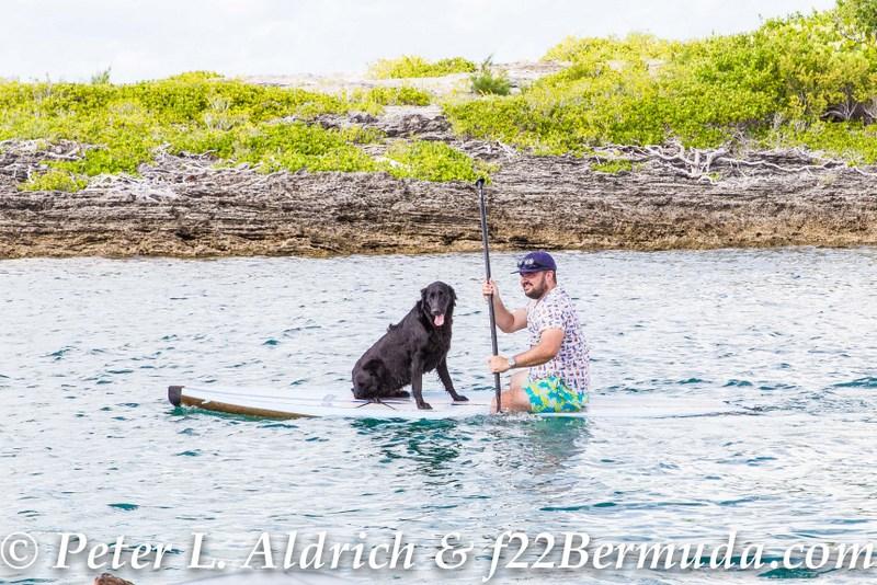 111-Go-Down-Berries-concert-Bermuda-2017-111
