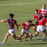 Atlantic Rugby Cup Bermuda, August 10 2017_2050