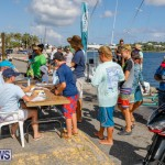 Bermuda Anglers Club's Sixth Annual Junior Fishing Tournament, August 20 2017_5725