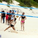 Corona Coed Beach Volleyball Tournament Bermuda Aug 12 2017 (5)
