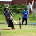 Cricket Western County Cup Bermuda Aug 12 2017 (3)