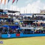 Cup Match Classic Bermuda, August 4 2017_9297