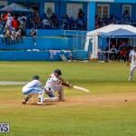 Cup Match Classic Bermuda, August 4 2017_9310