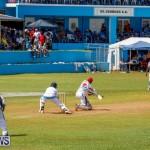 Cup Match Classic Bermuda, August 4 2017_9332