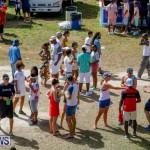 Cup Match Classic Bermuda, August 4 2017_9474
