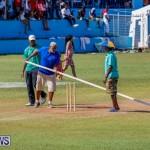 Cup Match Classic Bermuda, August 4 2017_9736
