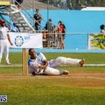 Cup Match Classic Bermuda, August 4 2017_9845
