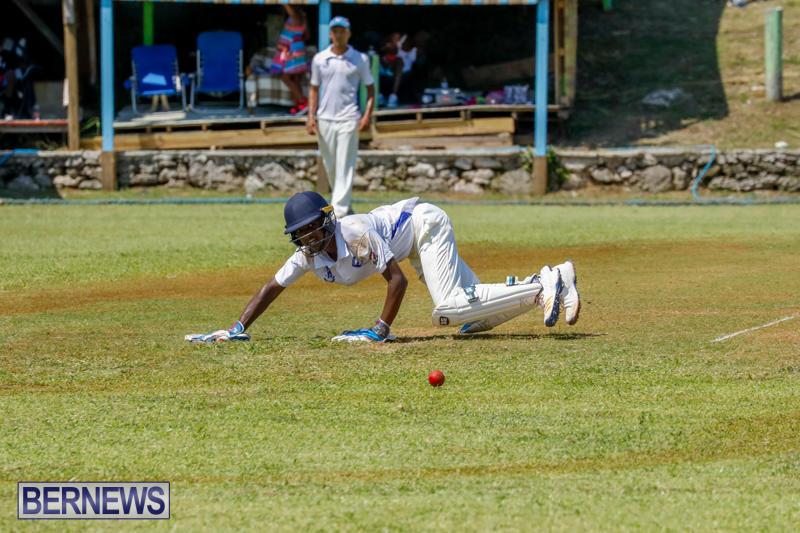 Eastern-County-Cricket-Bermuda-August-19-2017_4468