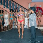 Naked Canvas Fashion Show Bermuda August 13 2017 (77)