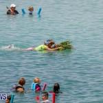 Non-Mariner's Race Bermuda, August 6 2017_0999