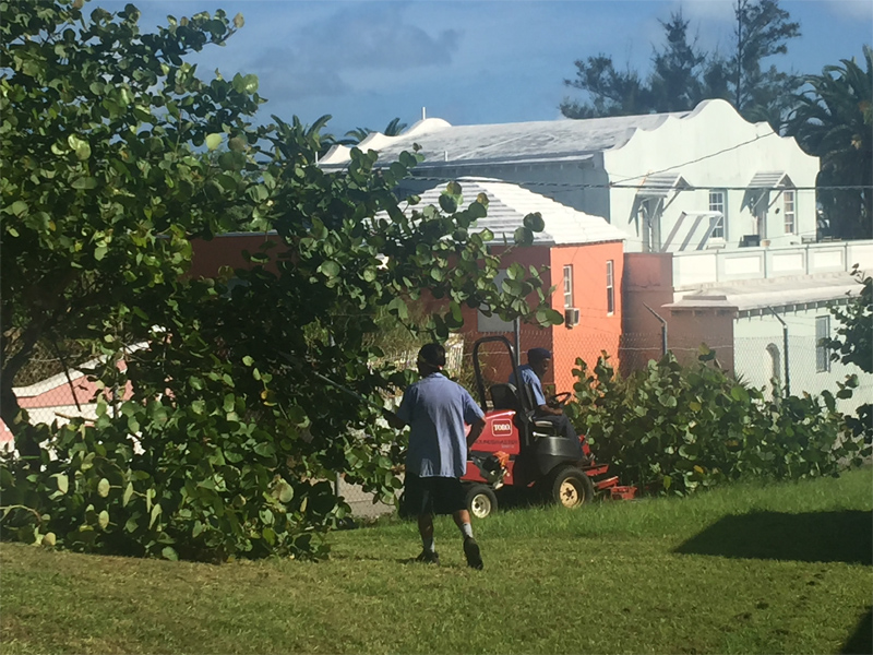 BLDC cleanup at Clearwater Bermuda Sept 2017 (2)