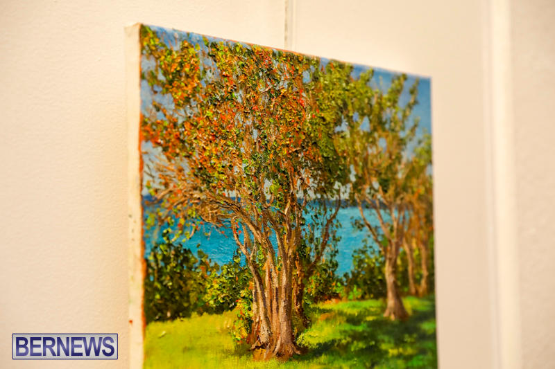Bermuda-Society-Of-Arts-September-21-2017_3726