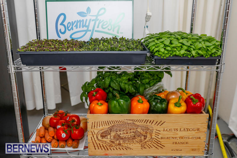 City-Food-Festival-Chef-Competition-Bermuda-September-18-2017_3518