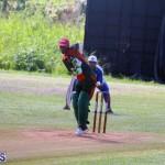 Cricket Bermuda September 10 2017 (19)