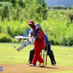 Cricket Champions of Champions Bermuda Sept 24 2017 (11)