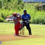 Cricket Champions of Champions Bermuda Sept 24 2017 (12)