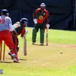 Cricket Champions of Champions Bermuda Sept 24 2017 (14)