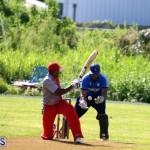 Cricket Champions of Champions Bermuda Sept 24 2017 (5)
