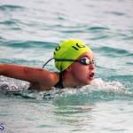 Open Water Bermuda – National Swimming Championships Sept 2017 (1)
