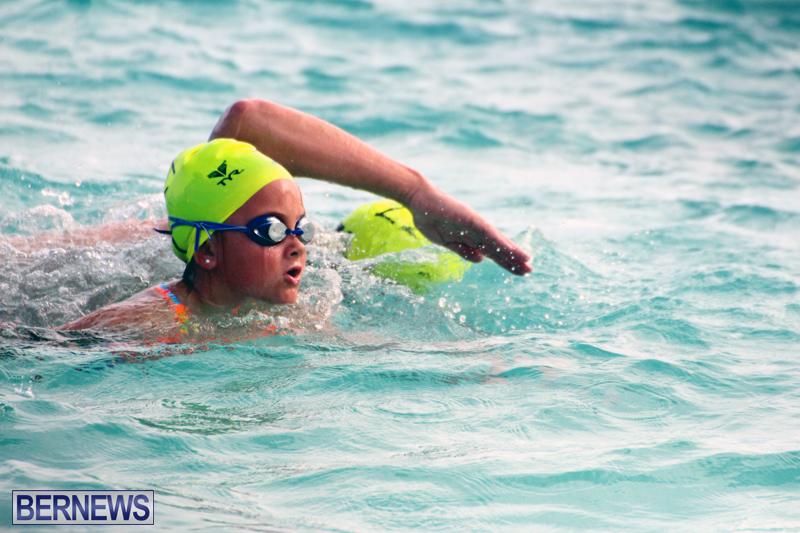 Open-Water-Bermuda-–-National-Swimming-Championships-Sept-2017-13