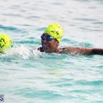 Open Water Bermuda – National Swimming Championships Sept 2017 (14)