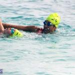 Open Water Bermuda – National Swimming Championships Sept 2017 (15)