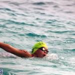 Open Water Bermuda – National Swimming Championships Sept 2017 (6)