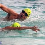 Open Water Bermuda – National Swimming Championships Sept 2017 (7)