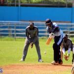 cricket Bermuda September 2017 (1)