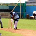 cricket Bermuda September 2017 (10)