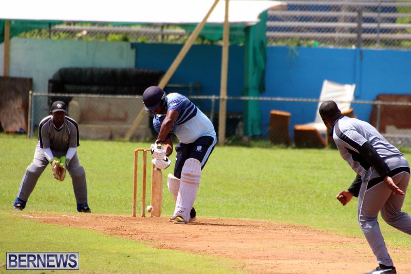 cricket-Bermuda-September-2017-10