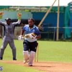 cricket Bermuda September 2017 (11)