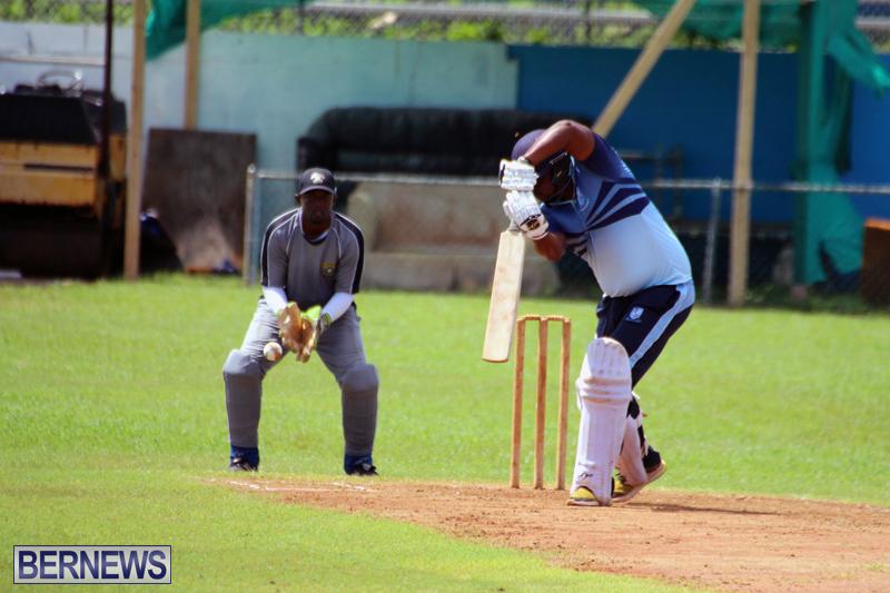 cricket-Bermuda-September-2017-12