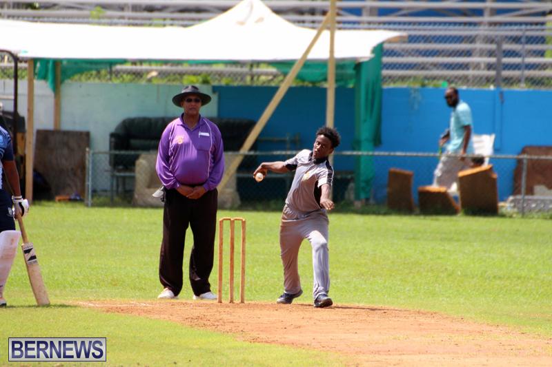cricket-Bermuda-September-2017-15