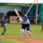 cricket Bermuda September 2017 (17)