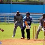 cricket Bermuda September 2017 (2)